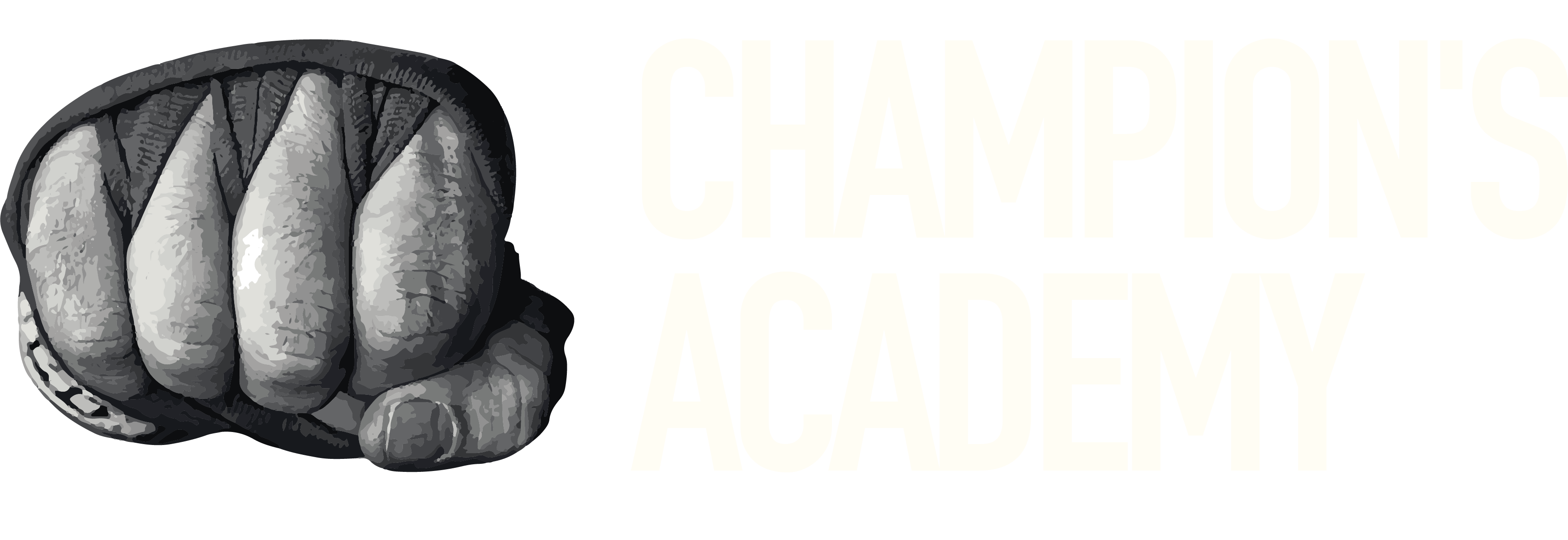 Champion's Academy Bruxelles
